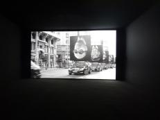 wystawowe zwierze 13. Istanbul Biennale, Turkey (12)