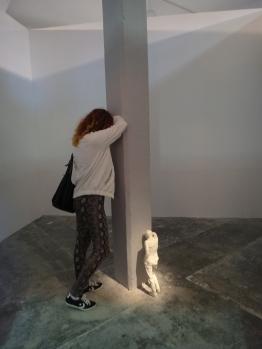 wystawowe zwierze 13. Istanbul Biennale, Turkey (8)