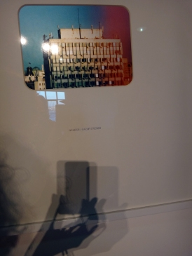 wystawowe zwierze 13. Istanbul Biennale, Turkey (9)