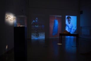 wklad-wlasny-galeria-aula-wystawowe-zwierze-art-blog-1-dorota-kuzniarska-witold-modrzejewski