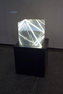 wklad-wlasny-galeria-aula-wystawowe-zwierze-art-blog-18