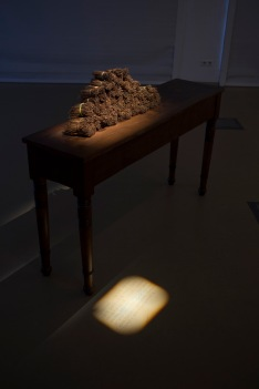wklad-wlasny-galeria-aula-wystawowe-zwierze-art-blog-4