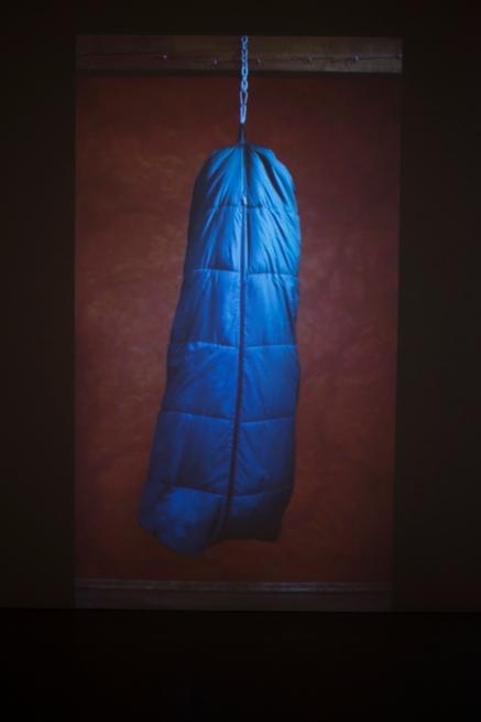 wklad-wlasny-galeria-aula-wystawowe-zwierze-art-blog-6-dorota-kuzniarska-witold-modrzejewski