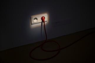 wklad-wlasny-galeria-aula-wystawowe-zwierze-art-blog-8