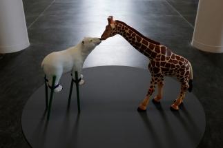 wystawowe-zwierze-art-blog-czyste-wody-csw-torun