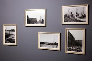 Muzeum Współczesne Wrocław Wystawowe Zwierze Czarna wiosna (8)