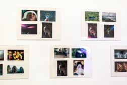 Sarkis Zachęta narodowa galeria sztuki Wystawowe Zwierze (2)