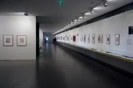 Muzeum Calouste Gulbenkiana Lizbona Portugalia Wystawowe Zwierze (23)